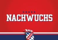 nachwuchs_grafik
